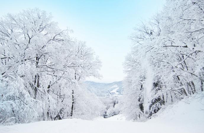 紫外線の少ない冬がベスト!冬に脱毛すべき3つの理由