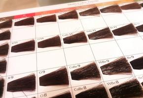 体毛をオシャレに!時代の中でヒトがみつけた『ムダ毛の意味』
