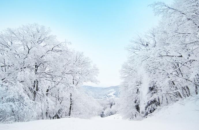 寒さは無関係!毛深い人が多い場所・少ない場所とは? | 脱毛情報WEB ...