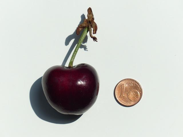 cherry-167801_640